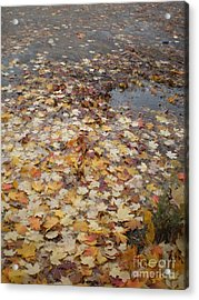 Fall Leaves And Puddle Acrylic Print
