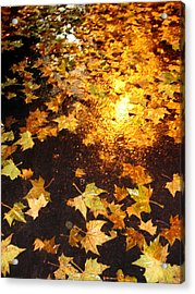 Fall Leaves Acrylic Print by Michel Mata