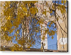 Fall Leaves On Open Windows Jerome Acrylic Print by Scott Campbell