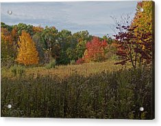 Fall Meadow Acrylic Print by Doug Hubbard