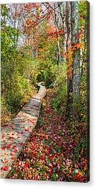 Fall Morning Acrylic Print by Bill Wakeley