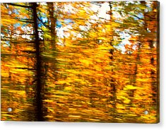 Fall Motion Acrylic Print by Michael Hubley