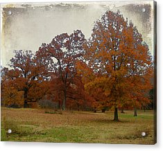 Fall On Antioch Road Acrylic Print