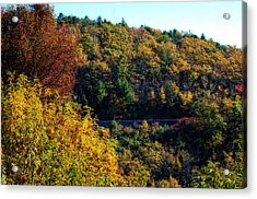Acrylic Print featuring the photograph Fall On The Blue Ridge Parkway by Cathy Shiflett
