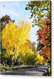 Fall On The Esplanade  Acrylic Print