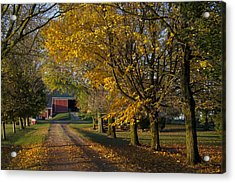 Fall On The Farm Acrylic Print by John-Paul Fillion