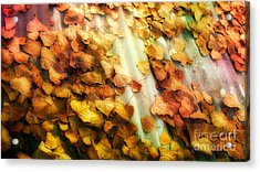 Fall On The Roof Acrylic Print by Bobbi Feasel