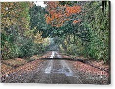 Fall On Witsell Rd. Acrylic Print by Scott Hansen