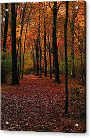 Acrylic Print featuring the photograph Fall Path by Raymond Salani III