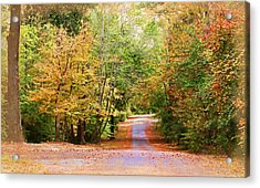 Acrylic Print featuring the photograph Fall Pathway by Judy Vincent