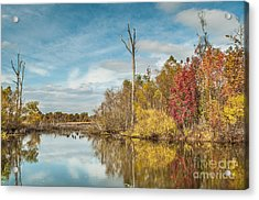 Acrylic Print featuring the photograph Fall Pond by Debbie Green