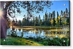 Acrylic Print featuring the photograph Fall Preview by Julia Hassett