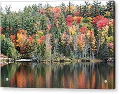 Acrylic Print featuring the photograph Fall Reflection by Paula Brown