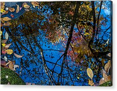Fall Reflection Acrylic Print by Tyson and Kathy Smith