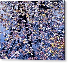 Acrylic Print featuring the photograph Fall Reflections by Alan L Graham