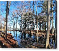Fall Reflections And Shadows  Acrylic Print by Valia Bradshaw