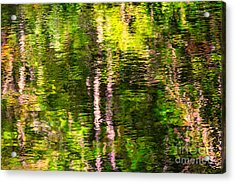 The Harz National Park Acrylic Print