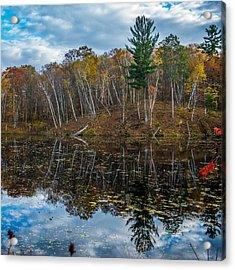 Fall Reflections Acrylic Print by Paul Freidlund