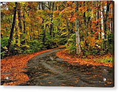 Fall Road To Glory Acrylic Print by Kenny Francis