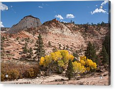 Acrylic Print featuring the photograph Fall Season At Zion National Park by John M Bailey