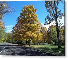 Acrylic Print featuring the photograph Fall Season by Eric Switzer