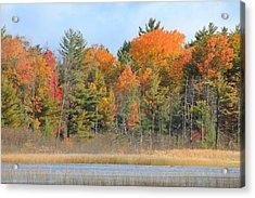 Fall Splender Acrylic Print by Rhonda Humphreys