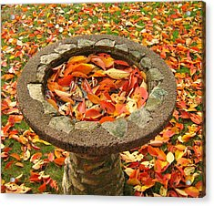 Acrylic Print featuring the photograph Fall Splendor by Bruce Carpenter