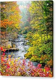 Fall Stream In New Hampshire Acrylic Print