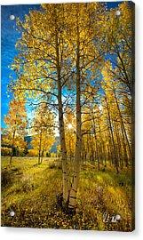 Fall Sunrise Acrylic Print by Rick Machle