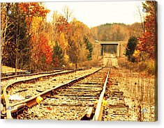Fall Tracks Acrylic Print by Stephanie Grooms