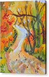 Fall Trail Acrylic Print by Warren Thompson