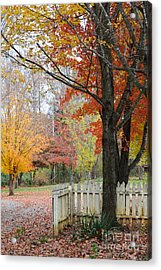 Fall Tranquility Acrylic Print by Debbie Green