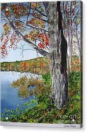 Fall Tree Acrylic Print by Carol Flagg