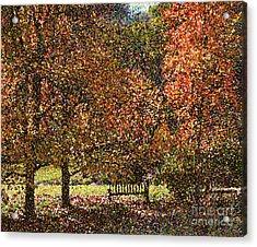 Fall Trees Acrylic Print by Nicholas Burningham