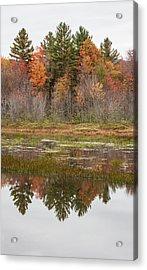 Fall Trees Reflected In Lake Chocorua Acrylic Print by Karen Stephenson