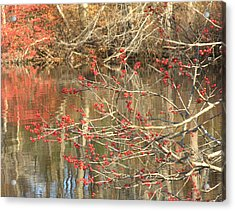 Fall Upon The Water Acrylic Print