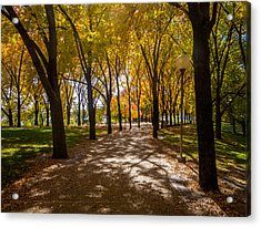 Fall Walk Acrylic Print