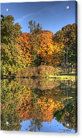 Fall - Which Side Is Up Acrylic Print