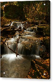 Fall With Grace Acrylic Print