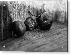 Fallen Berries Acrylic Print