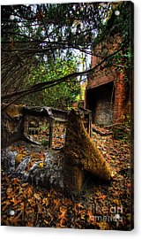 Fallen Colors Acrylic Print by Amy Cicconi