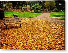 Fallen Leaves Acrylic Print