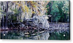 Fallen Reflection Acrylic Print by Lana Trussell