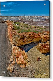 Fallen Trees Of Stone Acrylic Print by Rob Wilson