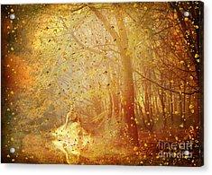 Falling ... Acrylic Print by Chris Armytage