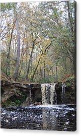 Falling Creek Falls - Columbia County Park Acrylic Print