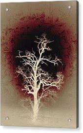 Falling Deeper... Acrylic Print