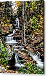 Acrylic Print featuring the photograph Falling Down by David Stine