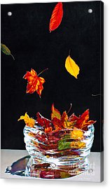 Falling Into Place Acrylic Print by Arlene Steinberg
