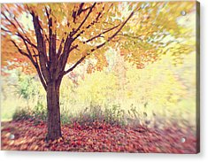 Falling Leaves Acrylic Print by Heather Green